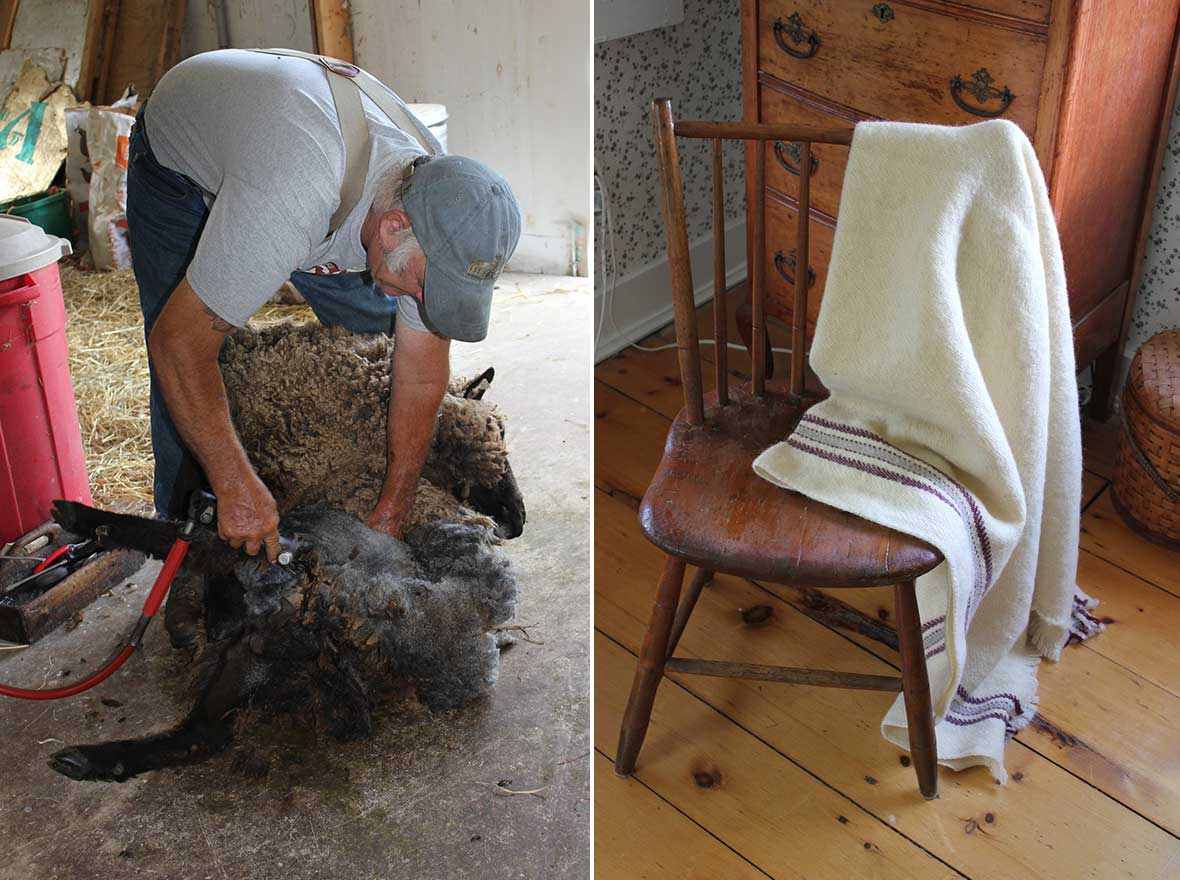 (left) Shearer Fred DePaul at work and (right) The Longfield Farm Blanket